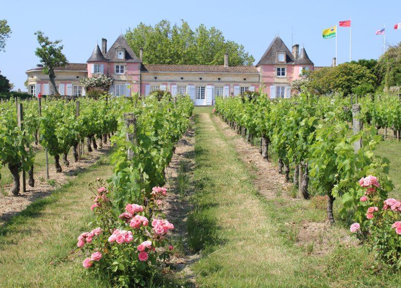 Pique-nique tradition au Château Loudenne