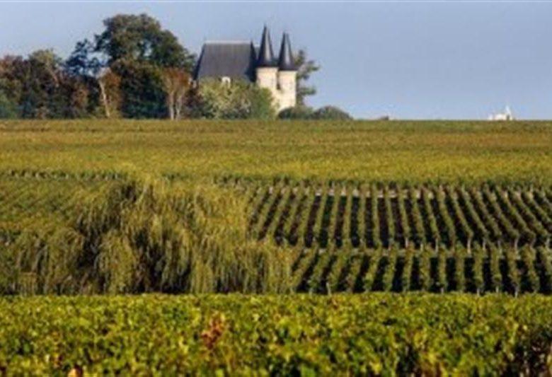 «La Randonnée des Châteaux» à Pauillac