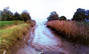 Port de Lamena